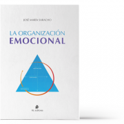 la-organizacion-emocional